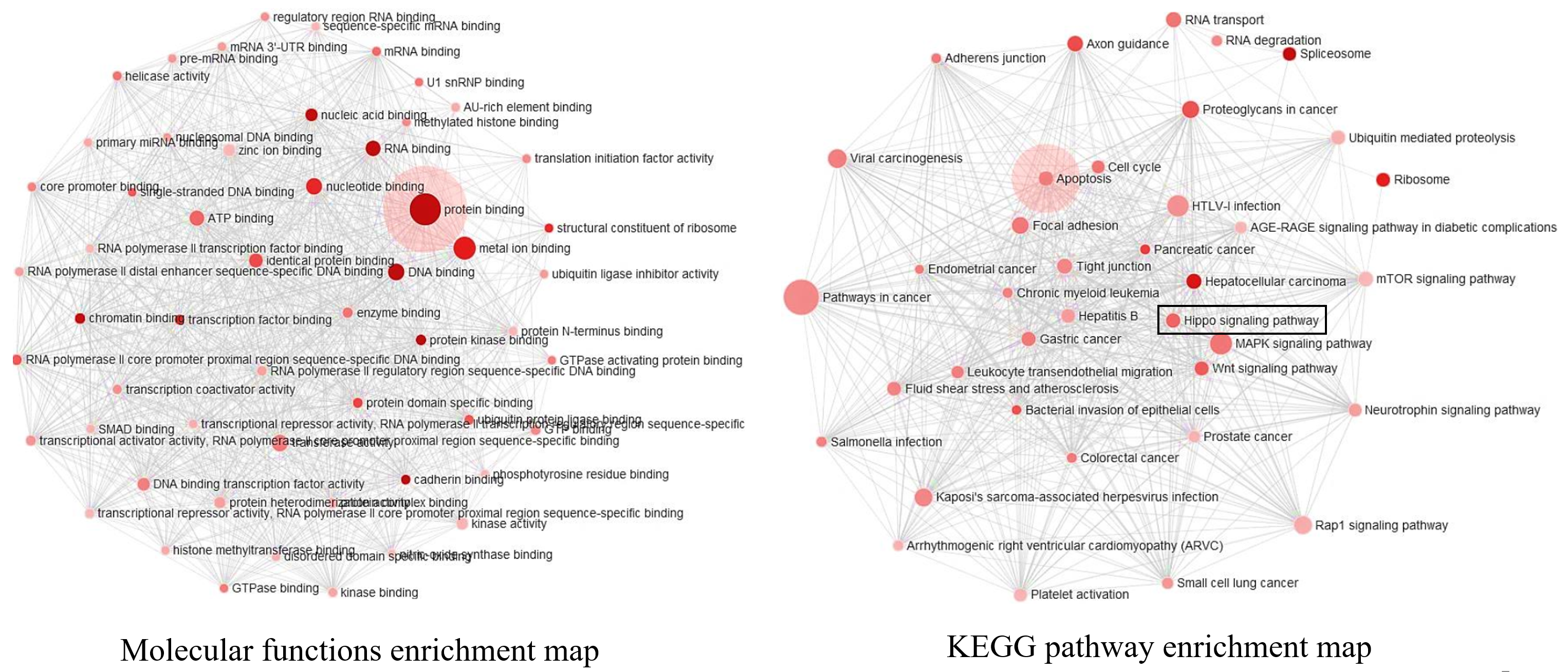 Sox4 ChIP-Seq data analysis | CityU-Bioinformatics